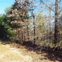 Home for sale: 1040 Emerald Shores Dr., White Plains, GA 30678