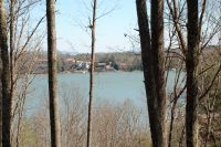 Home for sale: 94 Osprey Roost Dr., Nebo, NC 28761