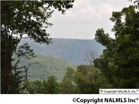 3 South Bluff Trail, Huntsville, AL 35803 Photo 9