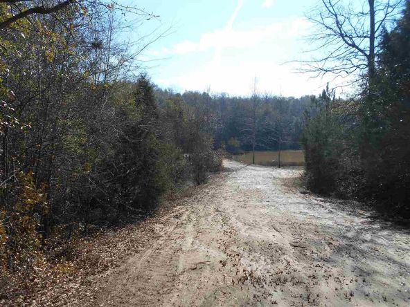 16.9 Acres Private Rd. 1363, Ariton, AL 36311 Photo 16