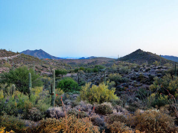 11073 E. Tamarisk Way, Scottsdale, AZ 85262 Photo 7
