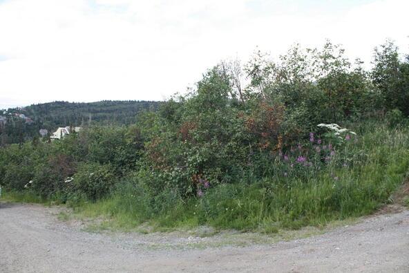 1231 Sultana Ct., Anchorage, AK 99516 Photo 32