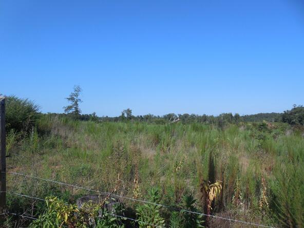 6028 County Rd. 565, Hanceville, AL 35077 Photo 2
