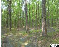 Home for sale: Lot # 24 Spring Ln., Newburg, PA 17240