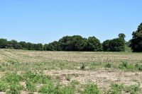 Home for sale: 36 +/- Ac Ms-63 Hwy., Lucedale, MS 39452