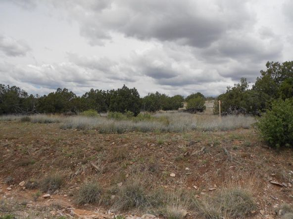 4650 W. Dillon Wash Rd., Prescott, AZ 86305 Photo 1