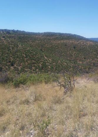885 Bonanza, Prescott, AZ 86301 Photo 10
