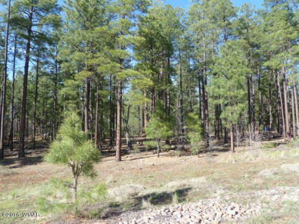 3158 E. White Mountain Blvd., Pinetop, AZ 85935 Photo 2
