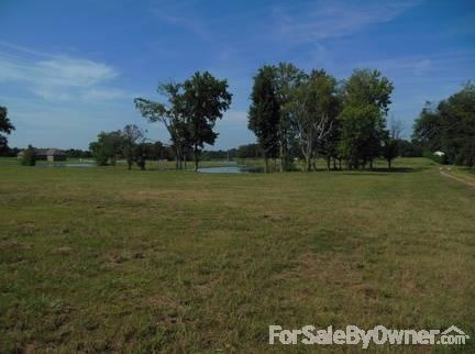 10 Oakridge Ln., Hartselle, AL 35640 Photo 7