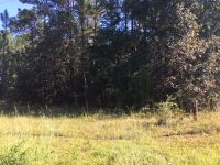 Home for sale: 574(Lot) Martin Dr., Donalsonville, GA 39845