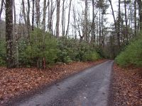 Home for sale: Tbd Blevins Rd. Lot 22, Chilhowie, VA 24319