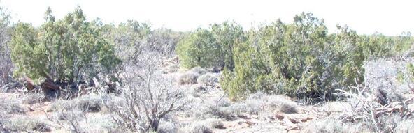 3894 Valley Rd., Snowflake, AZ 85937 Photo 6