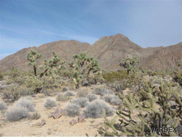 11932 S. Sherry Rd., Yucca, AZ 86438 Photo 21