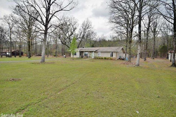 100 Roden Mill Rd., Conway, AR 72032 Photo 41