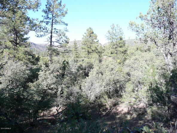8b N. Chamberlain Trail, Young, AZ 85554 Photo 29
