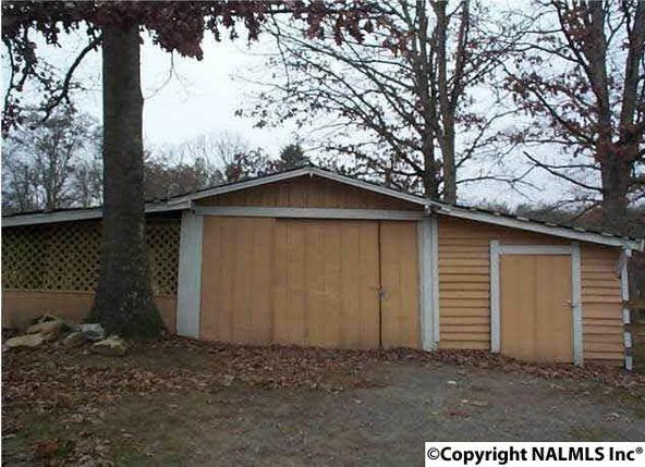 1654 County Rd. 641, Mentone, AL 35984 Photo 7