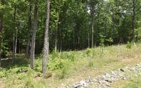 Home for sale: 46 Sharptop Settlement, Blairsville, GA 30512