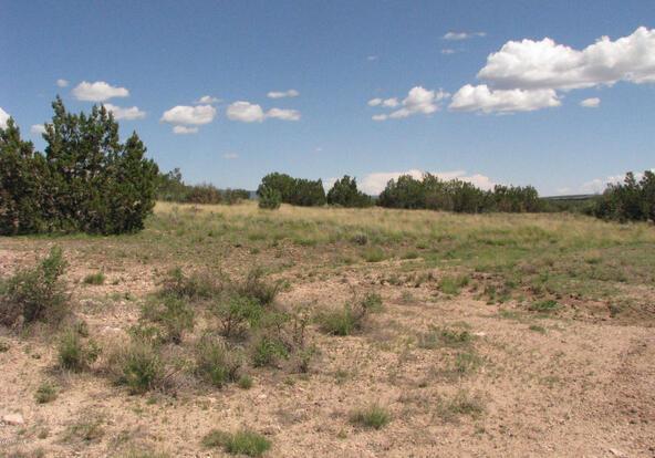 206e Bixler Trail, Ash Fork, AZ 86320 Photo 4