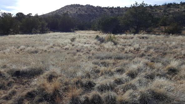3060 N. Panamint Ln., Chino Valley, AZ 86323 Photo 5