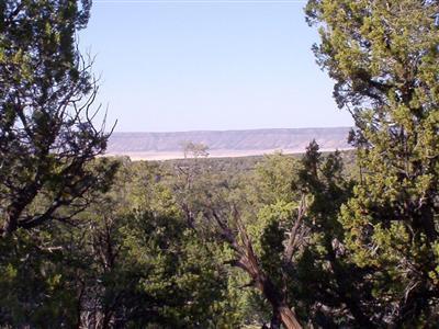 54867 N. Presidio Parkway, Seligman, AZ 86337 Photo 3