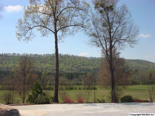 7724 Fords Valley Rd., Hokes Bluff, AL 35903 Photo 14
