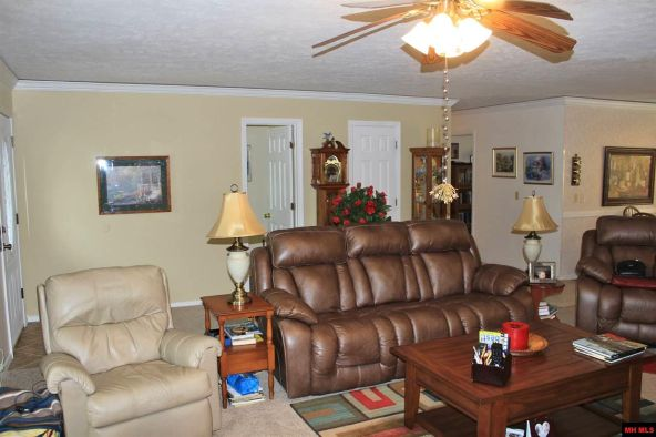 478 Robinson Loop, Mountain Home, AR 72653 Photo 8