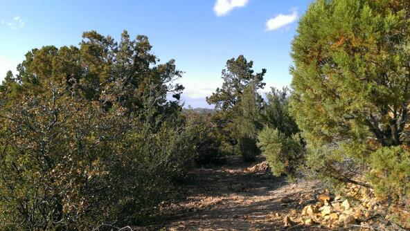 901 S. Skyview Dr., Prescott, AZ 86303 Photo 22