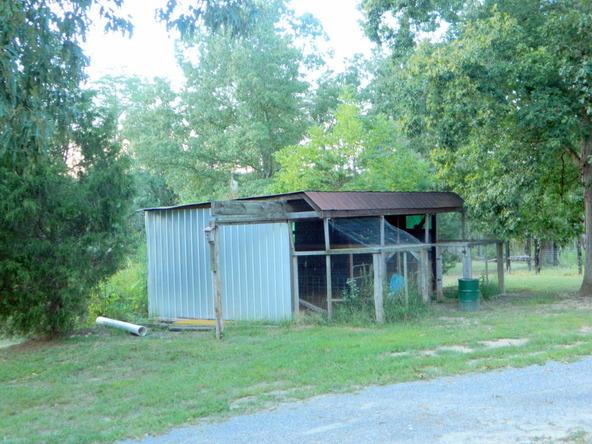 526 County Rd. 139, Bryant, AL 35958 Photo 156