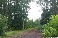 Home for sale: County Rd. 732, Cedar Bluff, AL 35959