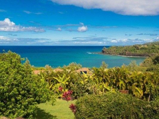 3292-D Kalihiwai Rd., Kilauea, HI 96754 Photo 9
