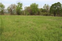 Home for sale: Tract 2 (2.74 Acres) Latta Rd., Canehill, AR 72717
