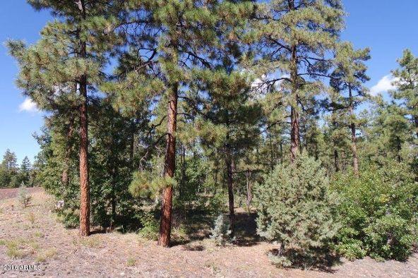 2850 W. Richardson Ln., Lakeside, AZ 85929 Photo 2
