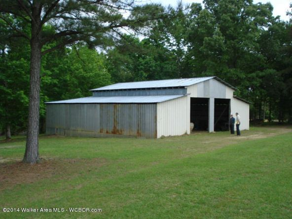1024 Lost Creek Rd., Carbon Hill, AL 35549 Photo 2