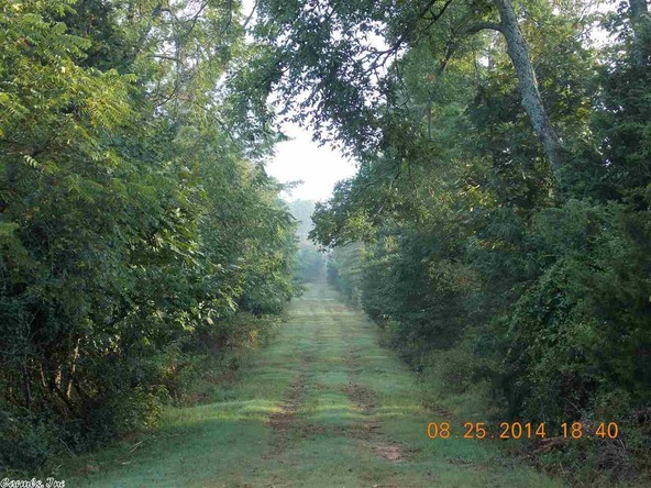1105 Walnut Grove Rd., Hector, AR 72843 Photo 10