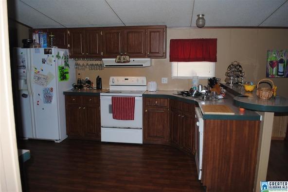 41 Norton Rd., Sylacauga, AL 35151 Photo 37