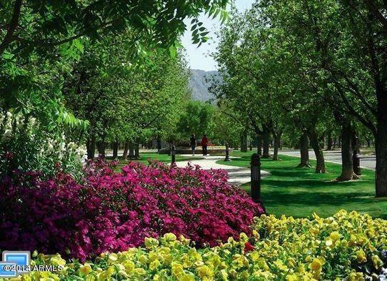 20281 E. Via de Arboles --, Queen Creek, AZ 85142 Photo 1