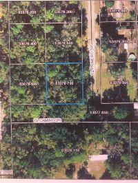 Home for sale: 109 El Primero Dr., Perry, FL 32347