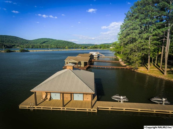 466 Snug Harbor Rd., Grant, AL 35747 Photo 46