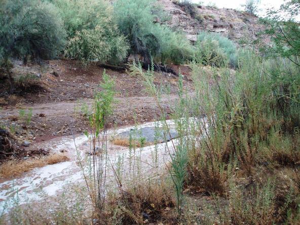 16547 E. Ashbrookk Dr., Fountain Hills, AZ 85268 Photo 26
