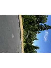 Home for sale: 372 Red Tail Hawk Ln., Lake Arrowhead, CA 92352