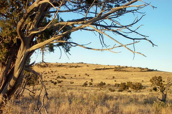 6218 S. Prairie Grass Ln., Williams, AZ 86046 Photo 8
