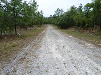 Home for sale: 00 S.E. 130 Avenue, Dunnellon, FL 34432