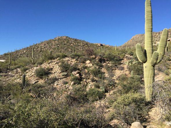 4156 W. Cayton Mountain, Marana, AZ 85658 Photo 1