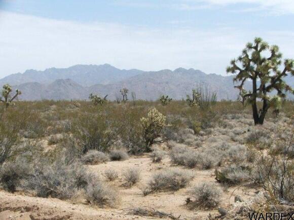 3054/58 Dateland Rd., Yucca, AZ 86438 Photo 4