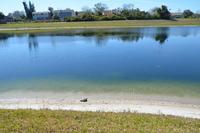 Home for sale: 1108 Southampton Dr., Port Orange, FL 32129