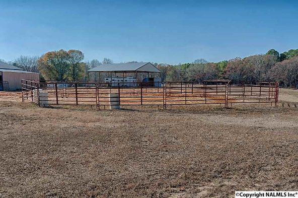 314 Neel School Rd., Danville, AL 35619 Photo 23