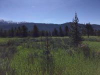 Home for sale: 416 Wilhelm Creek Ct., McCall, ID 83638