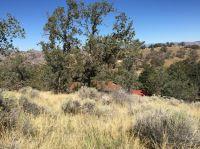 Home for sale: 0 William Tell Trails, Tehachapi, CA 93561
