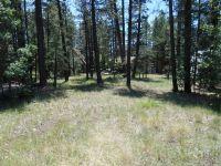 Home for sale: 1395 E. Wildcat Dr., Munds Park, AZ 86017