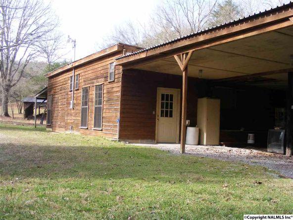 9416 County Rd. 103, Mentone, AL 35984 Photo 37